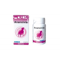 ANANXIVIA GRAND CHIEN BT 10 BLIST 15GELULES