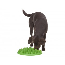 Gamelle Chien GREEN ANTI-GLOUTON