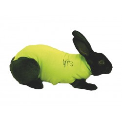 Gilet de protection Lapin MEDICAL PET SHIRT T XXS 0.9 - 1.5 kg