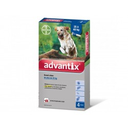 ADVANTIX Grands Chiens plus de 25 kg 24 pipettes 4 ml