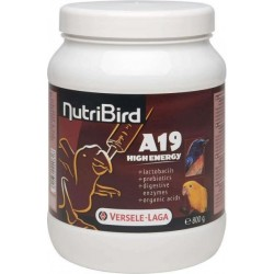 Aliment Oisillon NUTRIBIRD A19 HIGH ENERGY Boîte 800 g