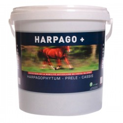 HARPAGO + POT 500 G