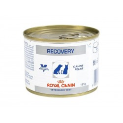 Veterinary Diet Chien Chat RECOVERY 12 Boîtes de 195 g